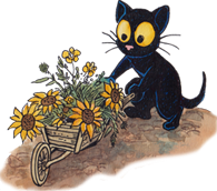 Little black cat Georgie with Flowers